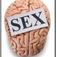 Human Sexuality: An AC Sex Coaching Perspective